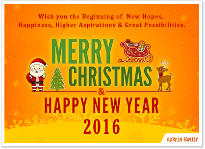 christmas 2015 new year 2016!